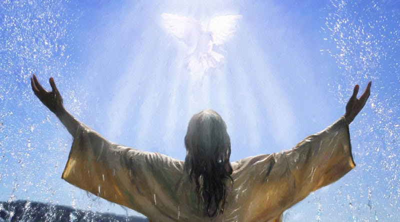 Jesus the Son of God – The Bible Study