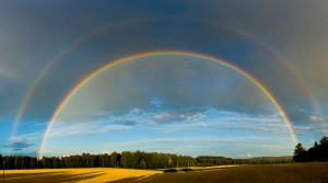 The Significance of the Rainbow - Part II