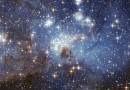 Stars in the Book of Job